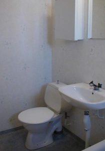 Toilet repair Cantonv Farmington